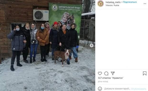 Шеремтьевскому приюту помогли студенты Университета транспорта
