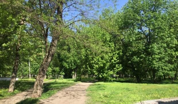 Галдун опроверг продажу части Центрального парка вБелгороде за85млн рублей