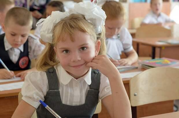 Дистанционное обучение в России может снизить будущие доходы школьников