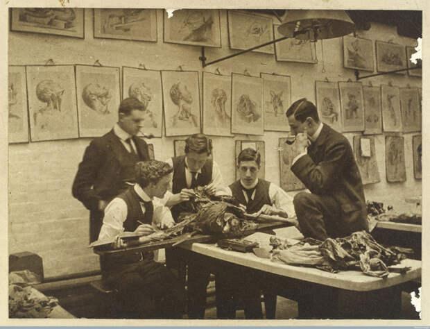 Секционный зал, ок. 1900 г. | Фото: atlasobscura.com.