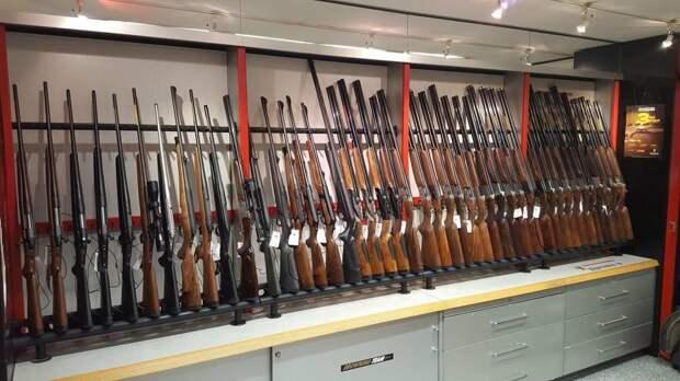 Ужесточить правила выдачи лицензий на оружие рекомендовал комитет Госдумы