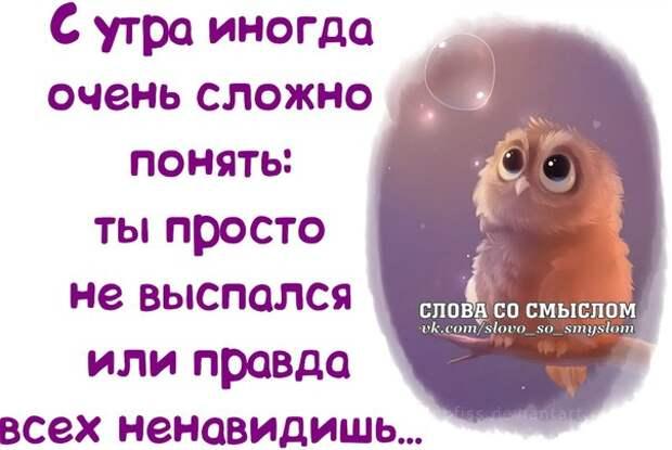 5672049_133951469_5672049_1392749993_frazochki9 (604x405, 50Kb)