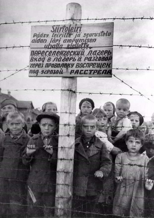 Фотография концлагеря (т. н. «переселенческого» лагеря), располагавшегося в Петрозаводске в районе Перевалочной биржи на Олонецкой улице. Этот постановочный снимок был сделан военным корреспондентом Галиной Санько уже после освобождения Петрозаводска летом 1944 года и использовался советской стороной на Нюрнбергском процессе.
