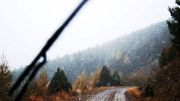 Дождь с мокрым снегом. О погоде в Алтайском крае 26 сентября