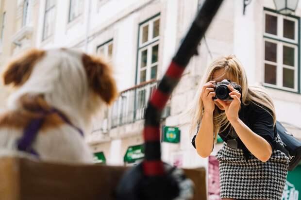 Субботнее настроение с Z fc: что спрятано за фасадом новинки от Nikon (Фотогалерея!)