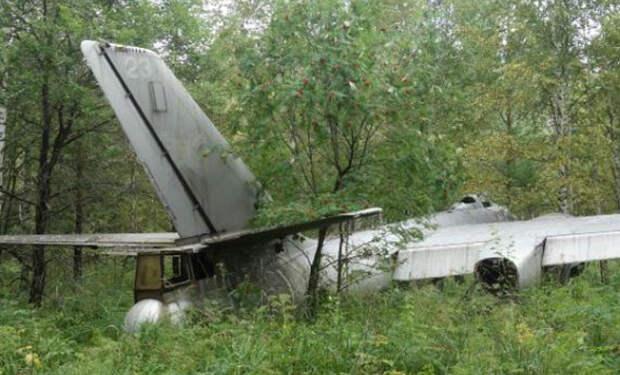 Самолет-призрак из леса: находка грибника, которой 70 лет