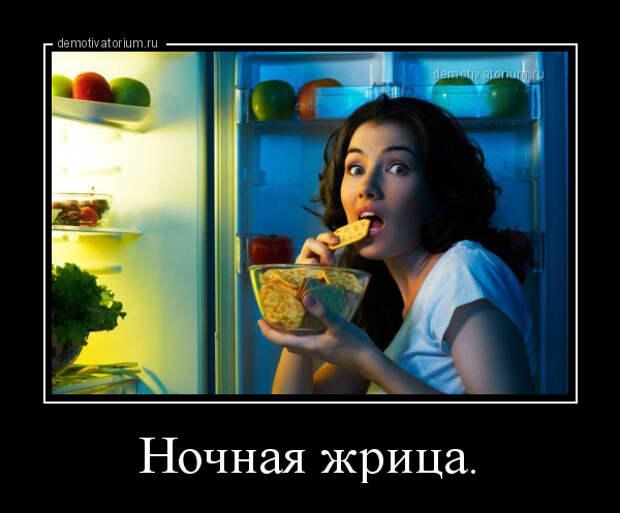 5402287_demotivatorium_ru_nochnaja_jrica_106243 (600x497, 102Kb)