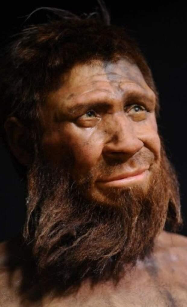 Неандертальский мужчина.   Фото: rozamira.pw.