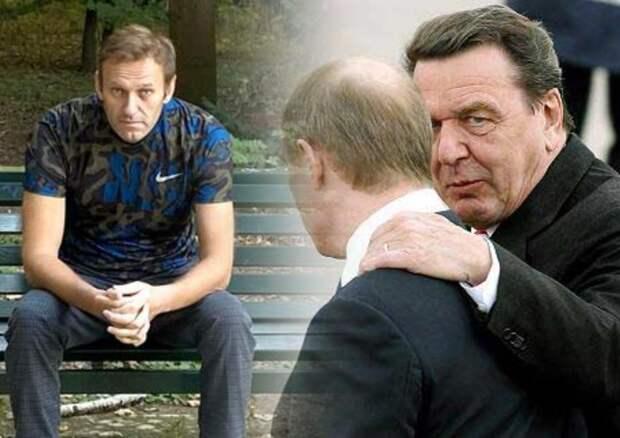 Эксперты из Германии считают, что Навальный пожалеет о своем интервью СМИ