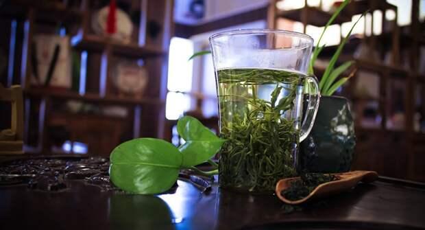 Зеленый чай, архивное фото