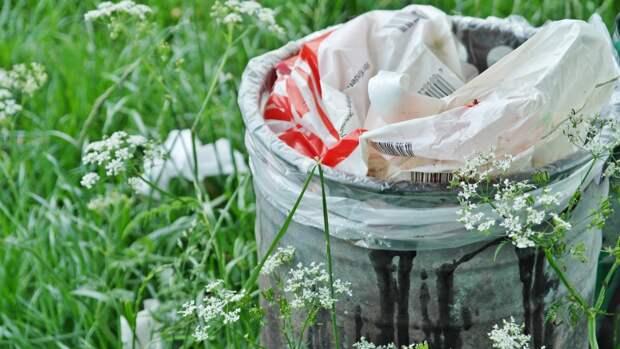 Жителям Кирова предложили обменять пластиковые пакеты на экосумки