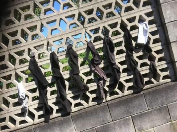 Носки на решетке