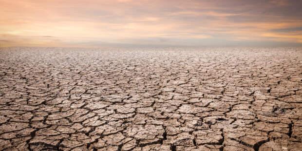 ООН: Мир на краю пропасти из-за надвигающейся экологической катастрофы