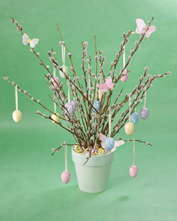 ветки вербы, украшенные яйцами и бабочками