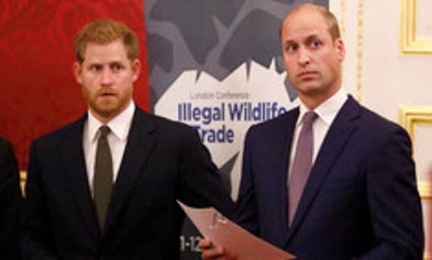 Гарри и Уильям отказались произносить речь вместе на церемонии в честь юбилея принцессы Дианы