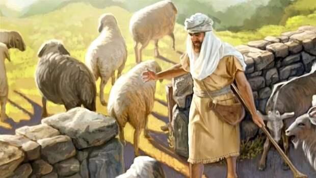 Притчи Иисуса: что значит быть солью и светом? Иисус учил с помощью метафор и сравнений
