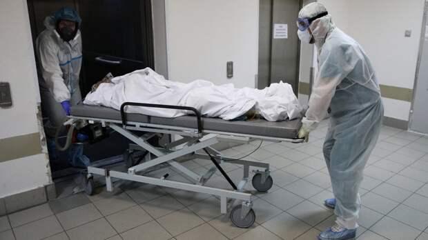 В России за сутки выявили 8790 новых случаев заражения коронавирусом