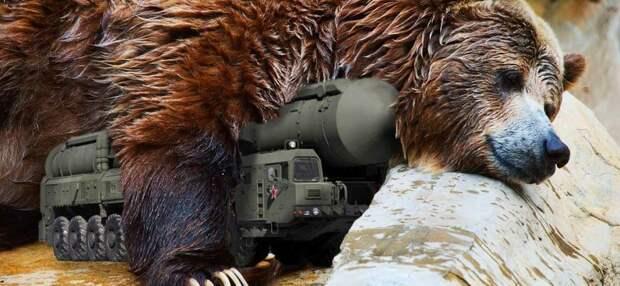 «ЕС не хочет будить русского медведя». СП-2 будет достроен