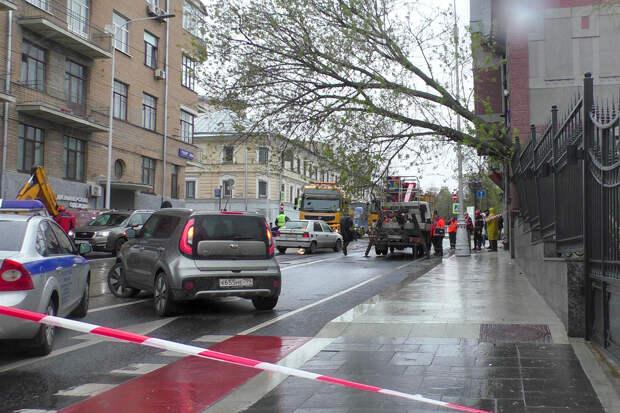 Ураган в Москве повалил более 50 деревьев