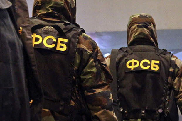 ФСБ задержала членов украинского радикального сообщества в Геленджике и Ярославле