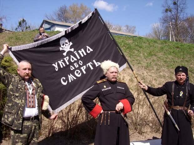 Суд реабилитировал украинских фашистов Холодного Яра и Черного леса