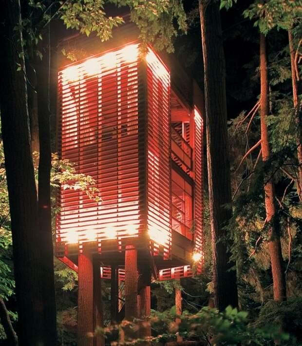 Двухуровневый домик на дереве создан из экологически чистых и натуральных стройматериалов («4TreeHouse», Канада).   Фото: photoblog.org.ua.
