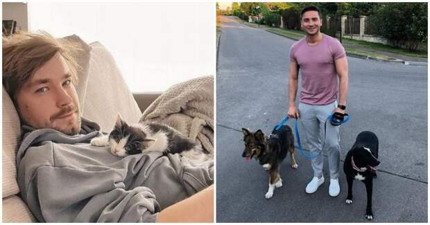 Эти 6 знаменитостей приютили бездомных животных, и теперь не расстаются с ними
