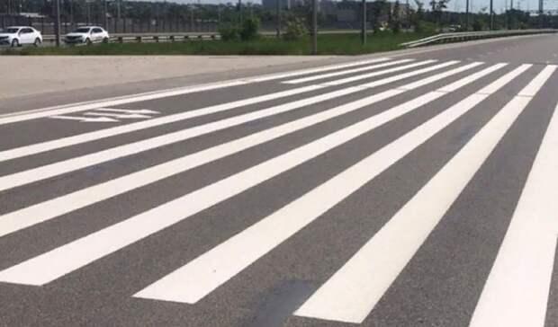 ВРостове-на-Дону виюне появятся 17 новых пешеходных переходов