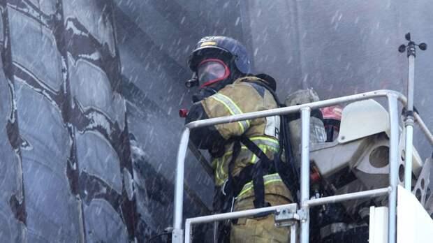 В Омской области потушили крупный пожар