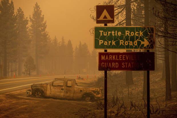 В США на огромных площадях горят леса