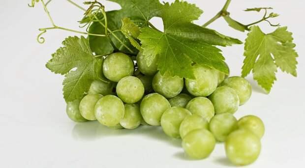 Белый налет на винограде — что это такое на самом деле?