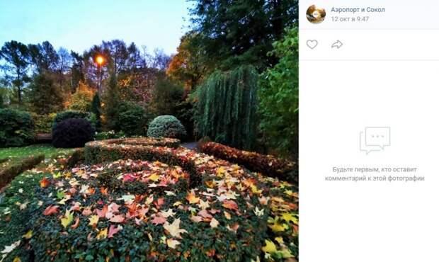 Фото дня: осенний сад у храма в Петровском парке