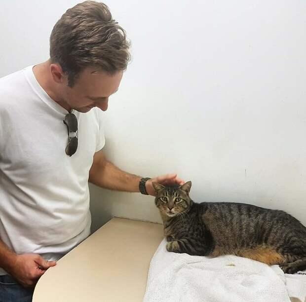 Правда, теперь кот уже несколько лет живёт в другой семье, и парень решил не забирать его, а каждую неделю приезжает навещать
