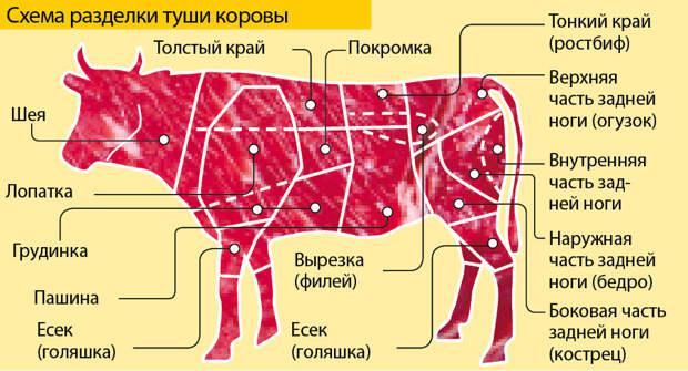 Как понять, какое мясо брать для котлет, а какое для супа?