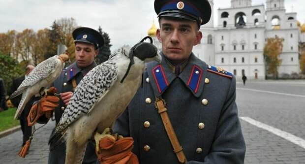 Крылатый дозор Кремля