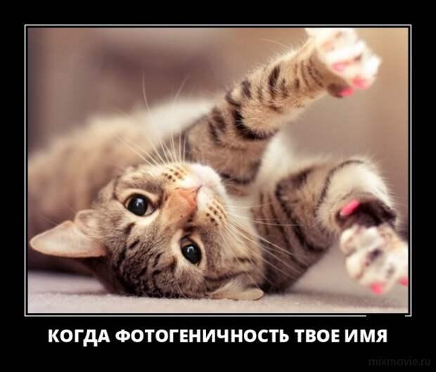 Веселье без границ :)