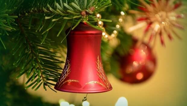Воробьев рассказал о планах на Новый год и Рождество