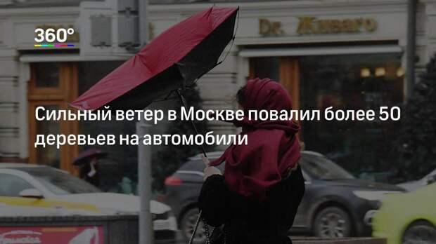 Сильный ветер в Москве повалил более 50 деревьев на автомобили