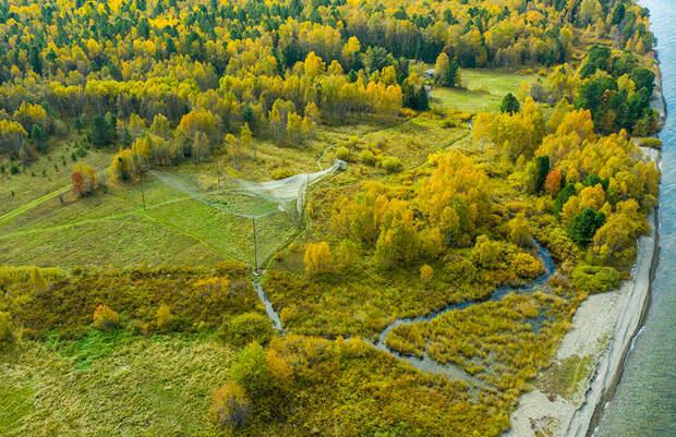 Загадочный Хамар-Дабан, Байкал и окольцованные птицы