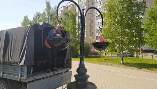 В Петрозаводске идут работы по благоустройству и уборке города