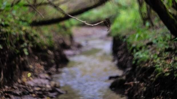 В пойме реки Ока нашли труп голой пенсионерки