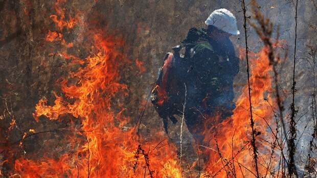 В Удмуртии объявлен четвёртый класс пожароопасности лесов