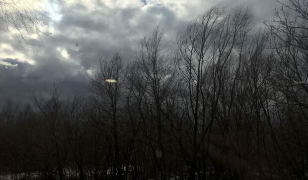 Холод, ветер идождь: какая погода ждет нижегородцев всреду