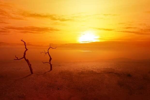 Ученые заявили, что глобальное потепление может вернуть Землю на35млн лет назад