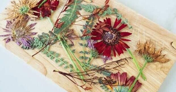 Фантастически красивая идея использования засушенных цветов + способ быстрой сушки