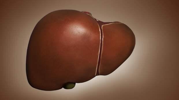 Названы ранние симптомы жировой болезни печени, которые можно определить по рукам