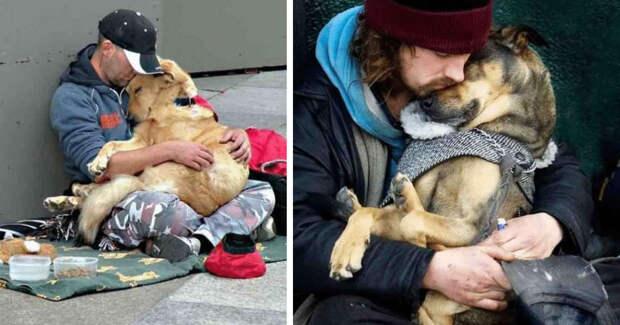 Трогательные истории дружбы бездомных и их питомцев