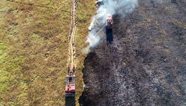 Более 150 пожаров произошло в лесах Подмосковья с начала года