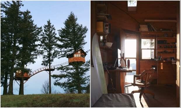 В «Treehouse» есть все необходимое для проживания круглогодично (Колумбия, США).   Фото: rope-park.com.