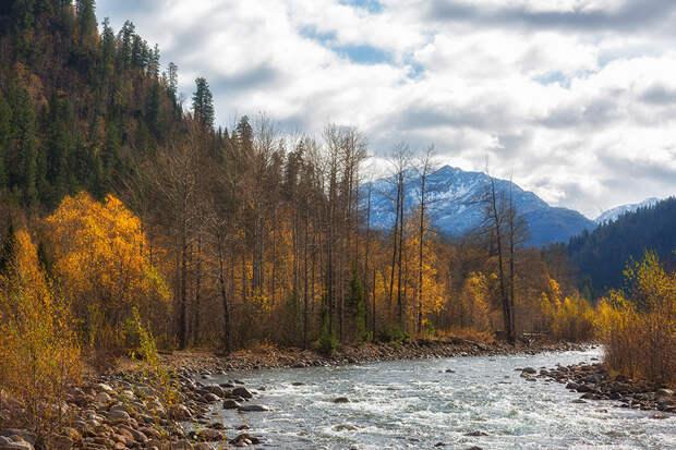 река выдриная байкальский заповедник